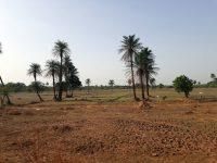 Zona de Gabú