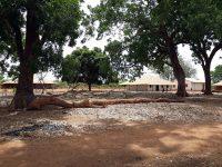 Kunté - tronco de árvore que caiu sobre a população