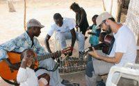 Tabatô - Balafon e guitarras